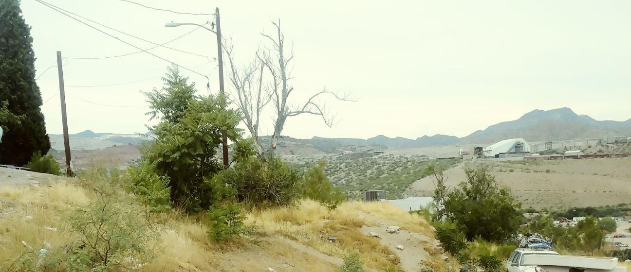 hillside12